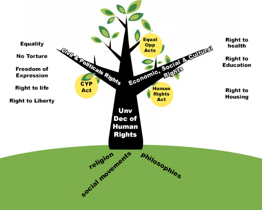 A picture of a tree depicting the history of human rights: The foundations and roots of human rights are philosophy, religion, history of conflicts, social movements, etc.  The trunk is the establishment of the modern human rights movement, particularly the Universal Declaration of Human Rights in 1948 by the United Nations.  Those initial principles were divided into two main branches of individual rights (called Civil and Political Rights) and Social/Collective Rights (Economic, Social and Cultural Rights).  The final step is the fruit of the tree, when local Governments adopt these international obligations into law. The most relevant being the ACT Human Rights Act 2004.
